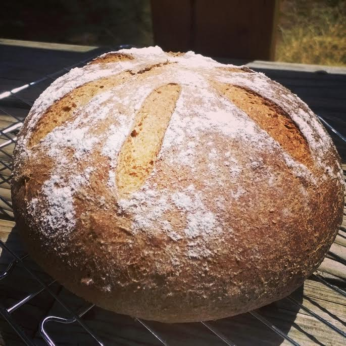 Honey wheat sourdough with toasted sunflower seeds. I make all sorts of breads these days, professionally and for fun. This is one of my favorites