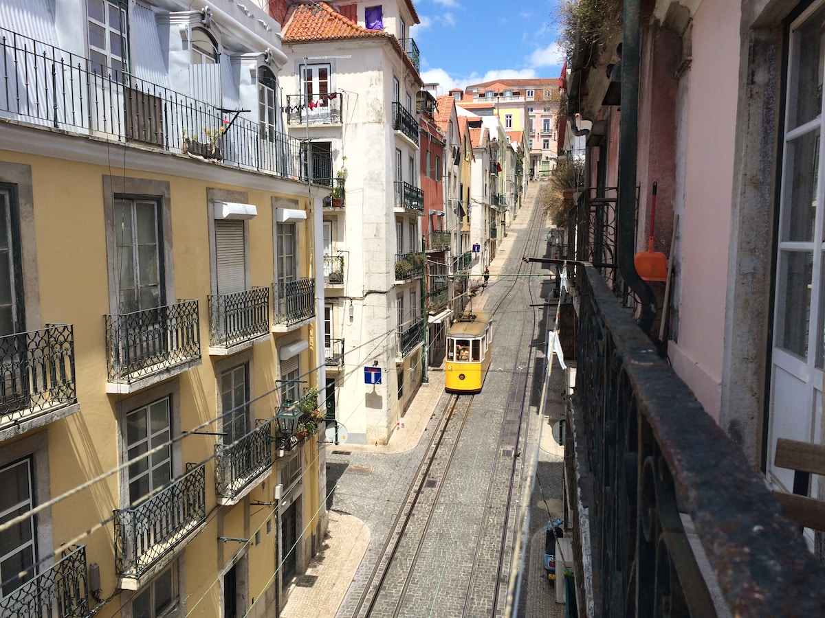 Funicular tram, everyday, up and down the street