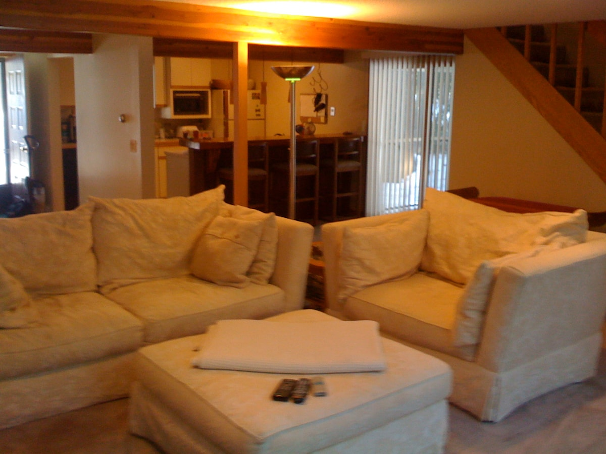 """We call these comfy sofas our """"cloud""""  We spend hours in them when we're at the condo."""