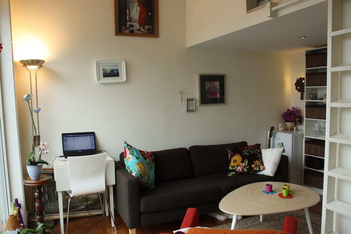 Central studio flat