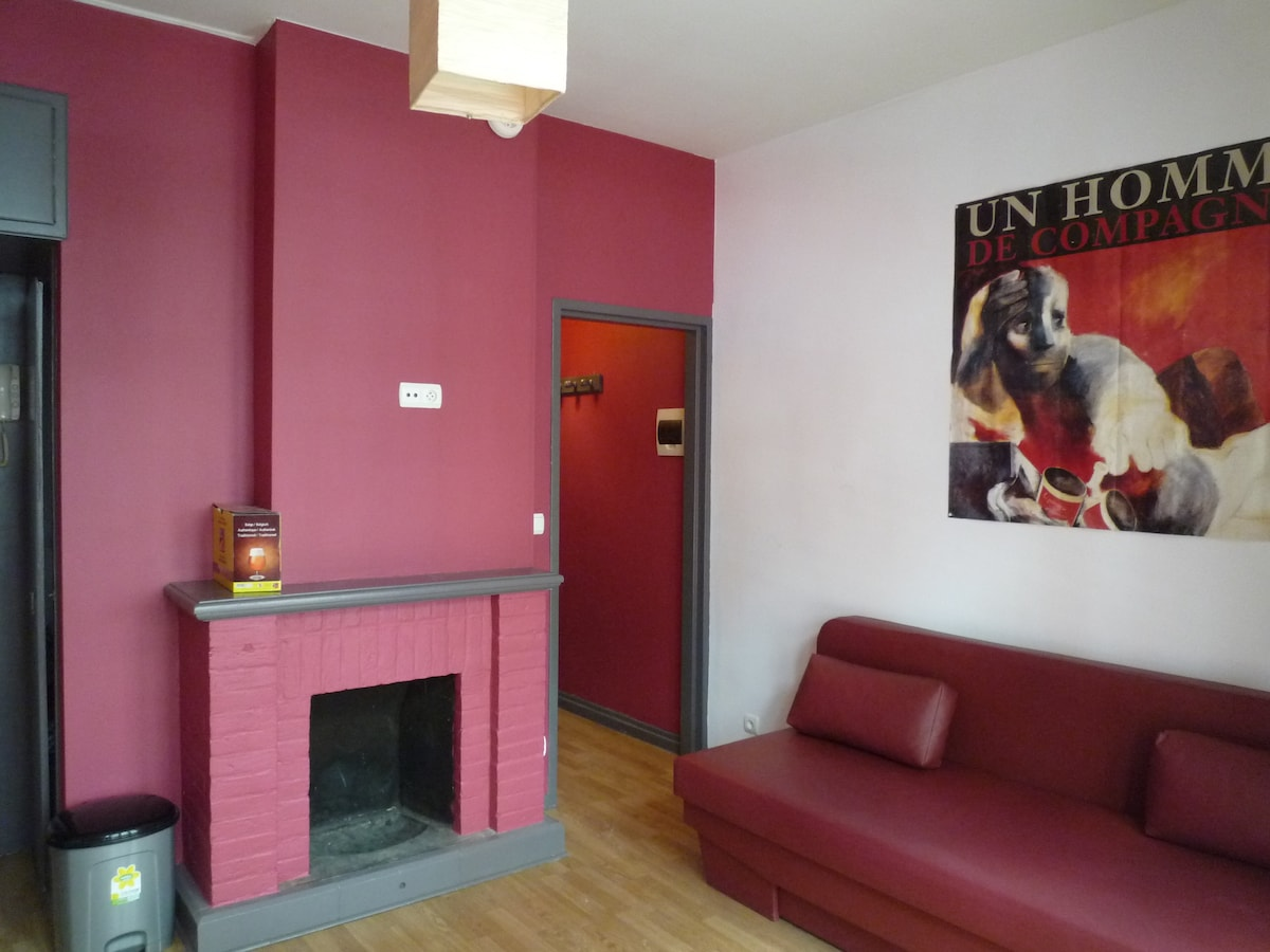 Lovely apartment -heart of Brussels
