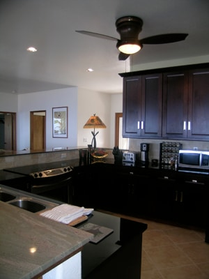 Cherry cabinets, stainless steel appliances, dishwasher, espresso and coffee makers, blender etc.