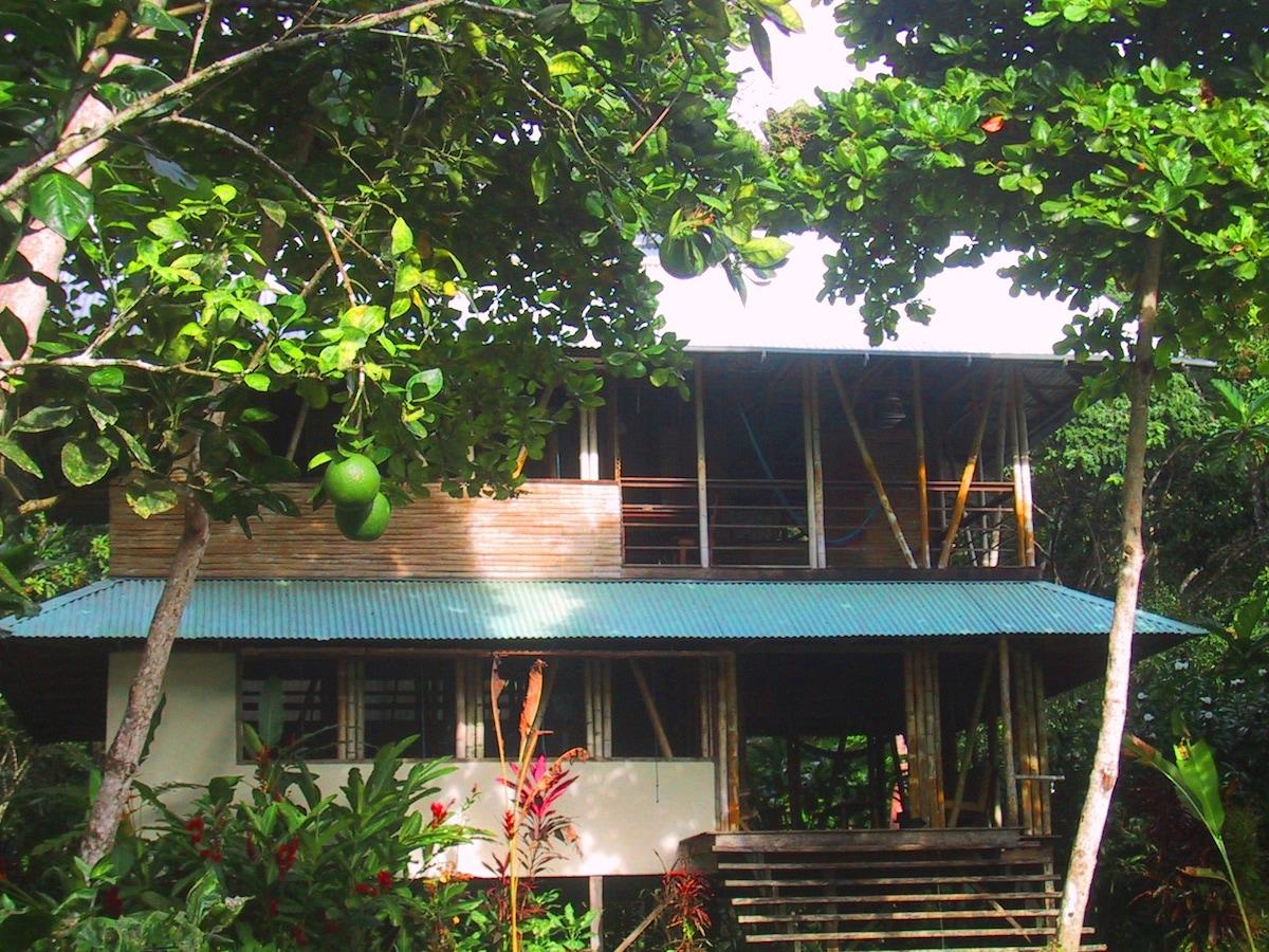 Casa Bambu TripAdvisor Award Winner