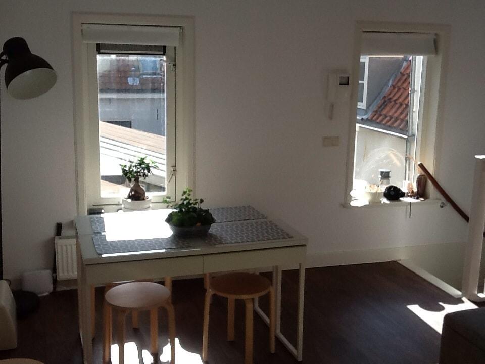 2 bed apartment, centre of Delft.