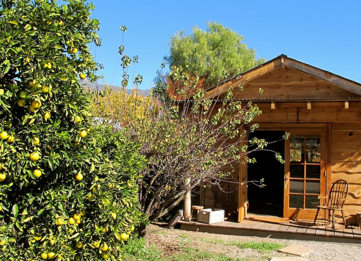 Peaceful Lodgepine Topa Topa Cabin