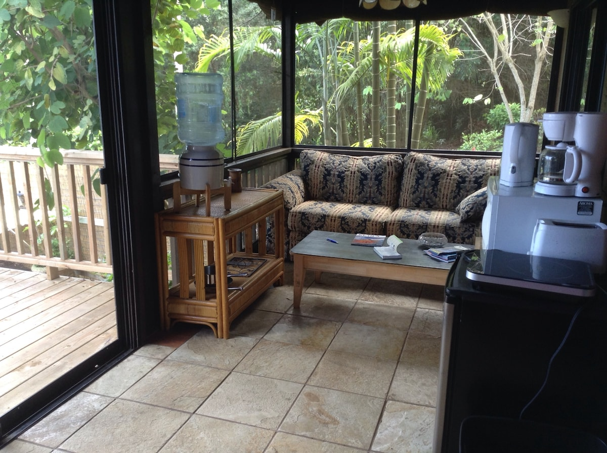 Sitting area in the north end of the sun room.