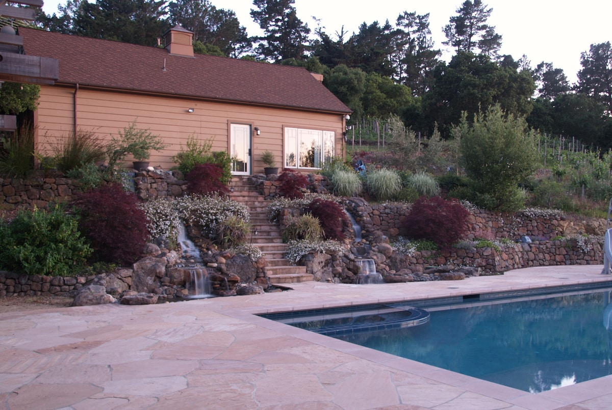 House is surrounded by vineyard, oak trees and a waterfall