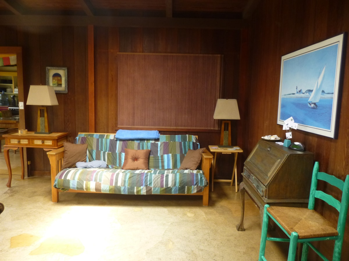 living room with the extra futon (that can be used as a bed)