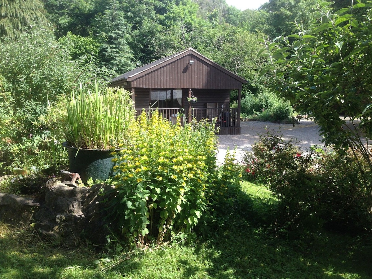 Woodland Cabins and Horseriding