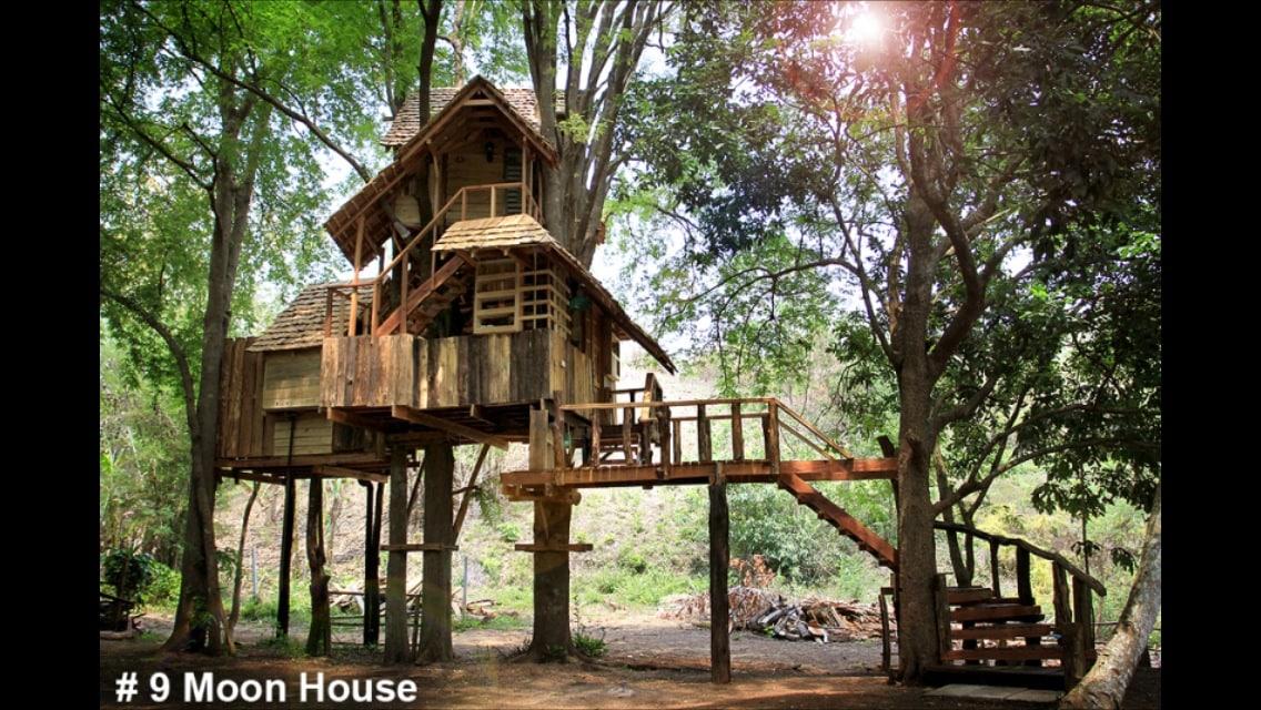 Moon Cottage treehouse