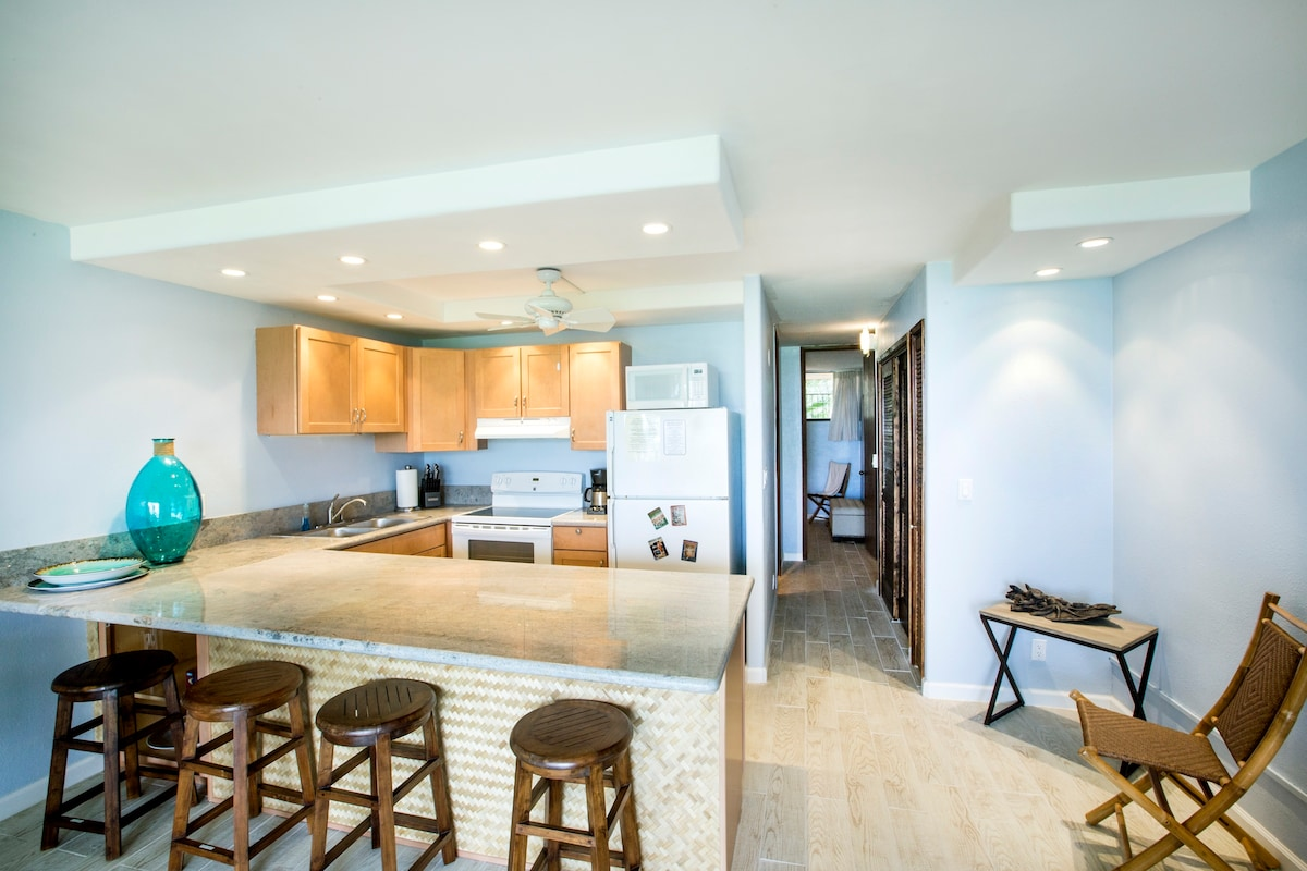 Newly renovated and stocked kitchen looks out over an expansive ocean view.