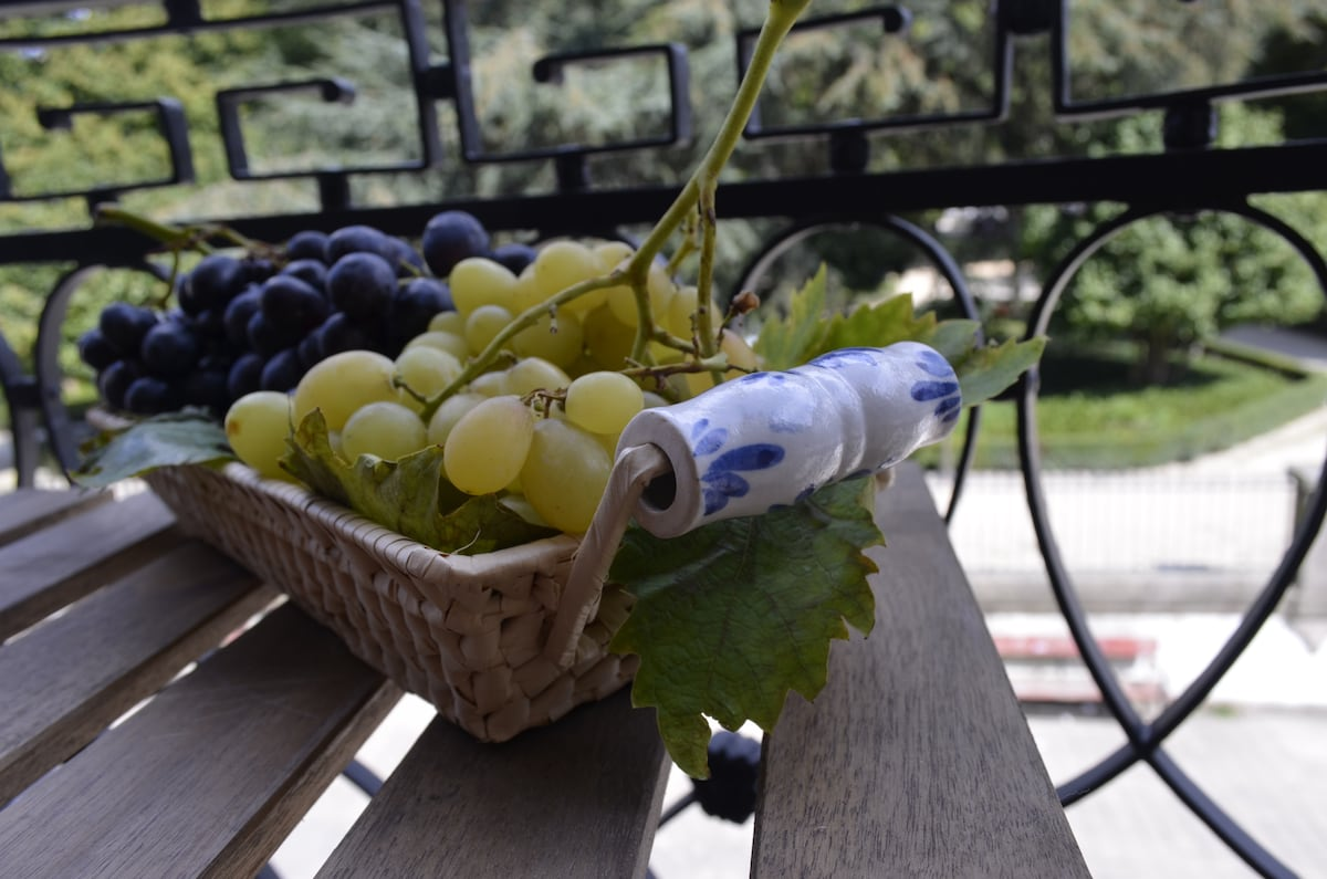 Come to Porto in the harvest times, you'll love the color of the Douro region.