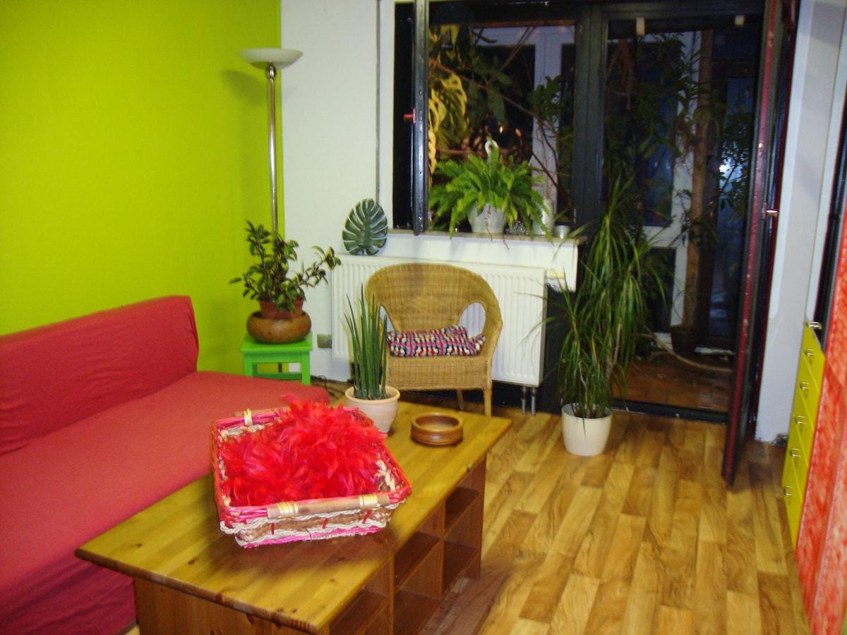 sonniges Zimmer mit Wintergarten