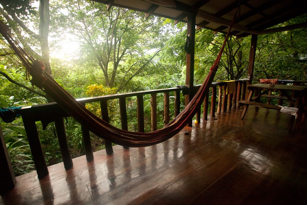 Shared Dorm Room | Jungle Balcony
