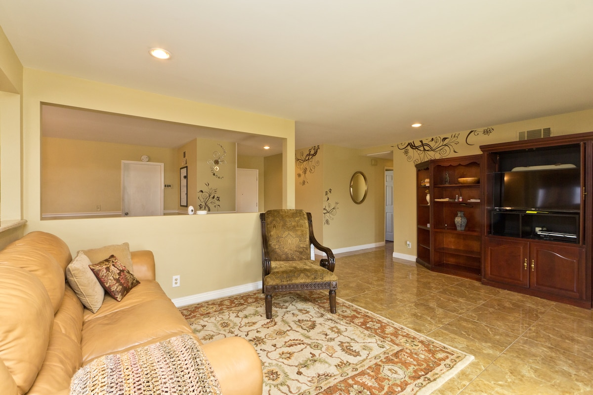 Spacious Living Room. Bright and Clean.