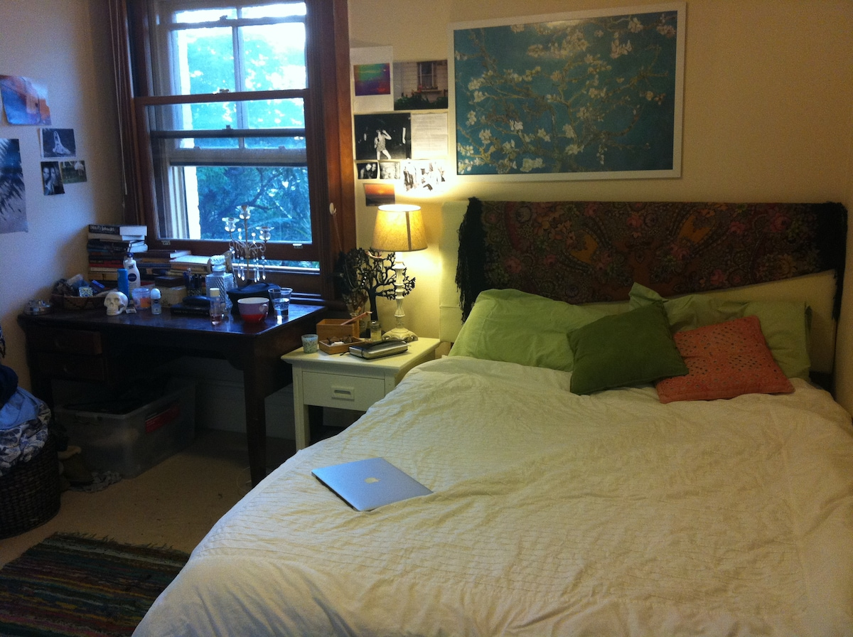 Sunny Large room in Enmore Park!!