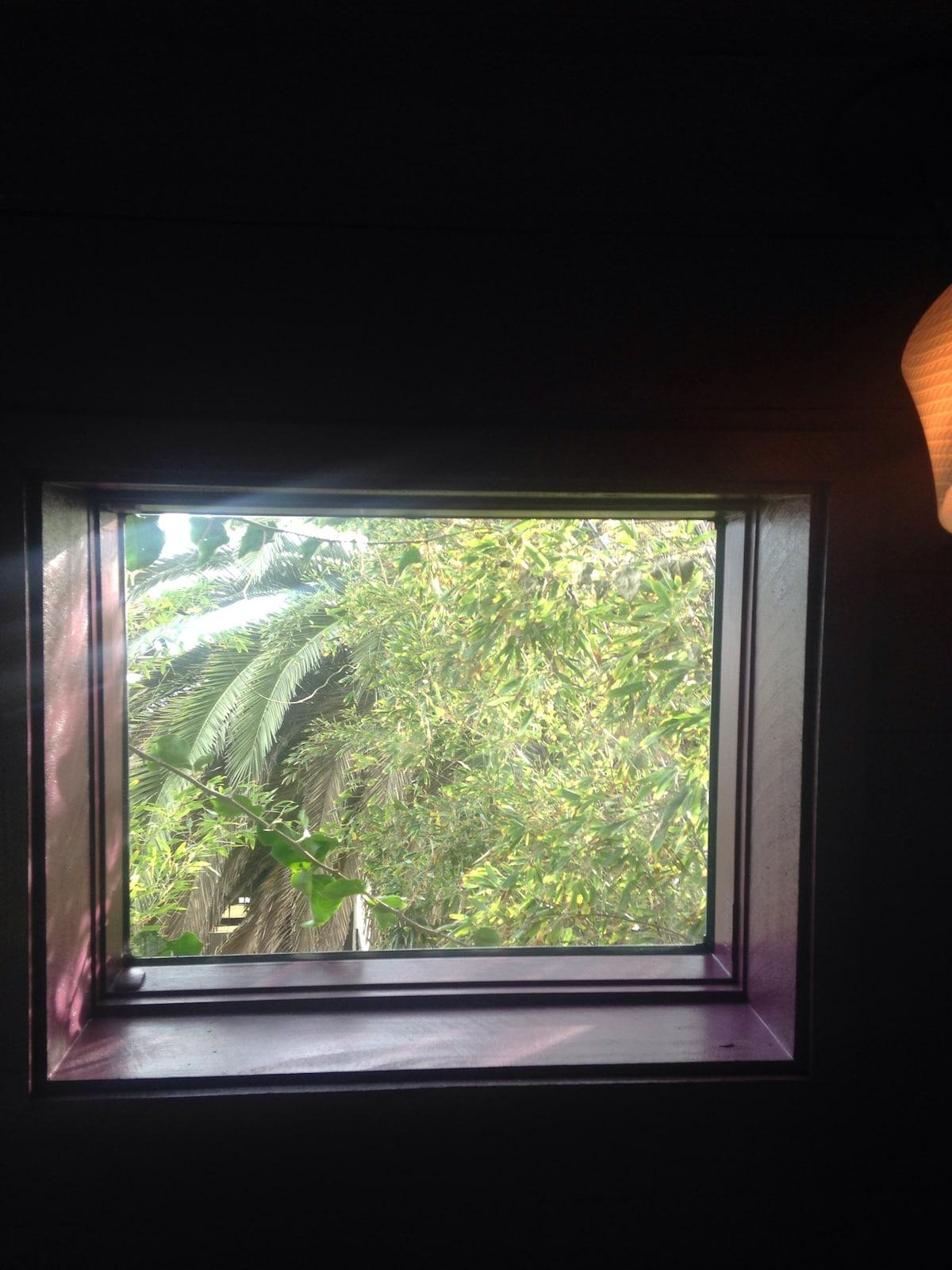 Beautifully rustling bamboo to sway you awake in the morning