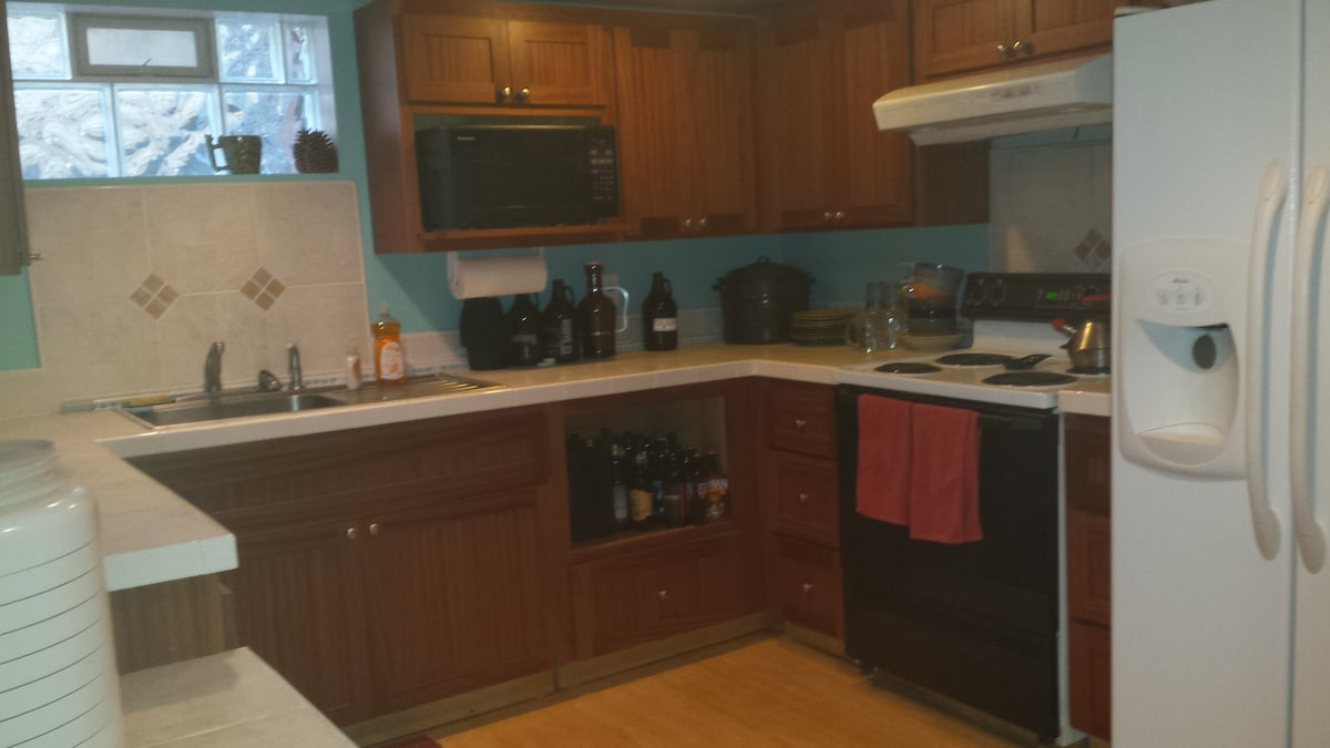 Full basement kitchen with stove, microwave, and fridge.