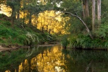 Riverside Kangaroo Valley