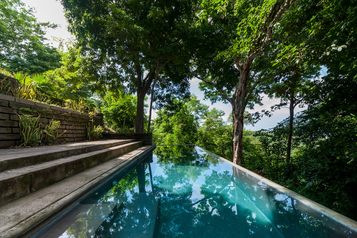Our shared 15m eco pool set right in the canopy