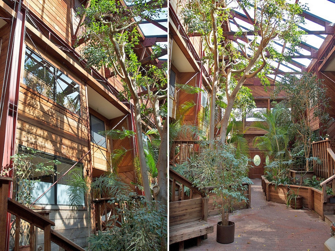 Clad in beautiful redwood, the 2-story unit (left) looks out onto a towering atrium filled with sun and greenery.