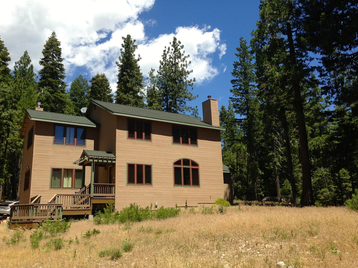 Artist's Home in the Shasta Forest