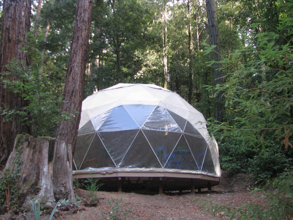 Geodome in the Santa Cruz Mountains