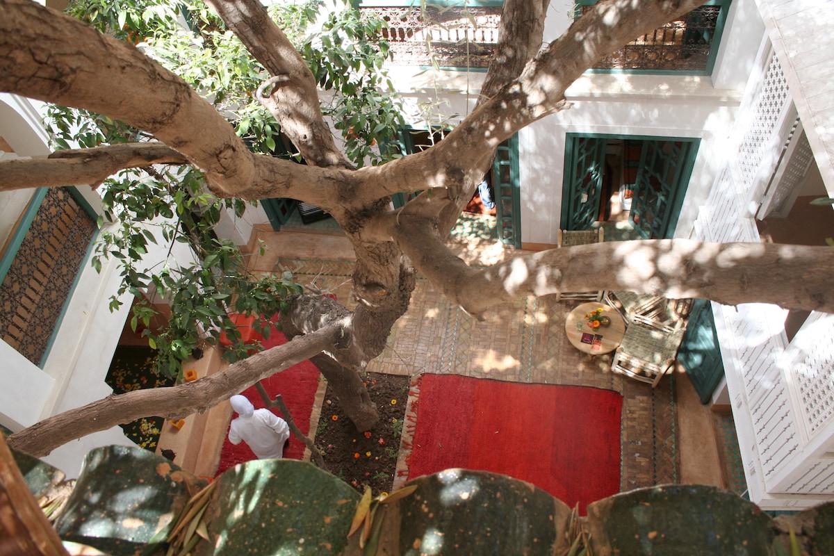 Dar Zitouna, Classic Room