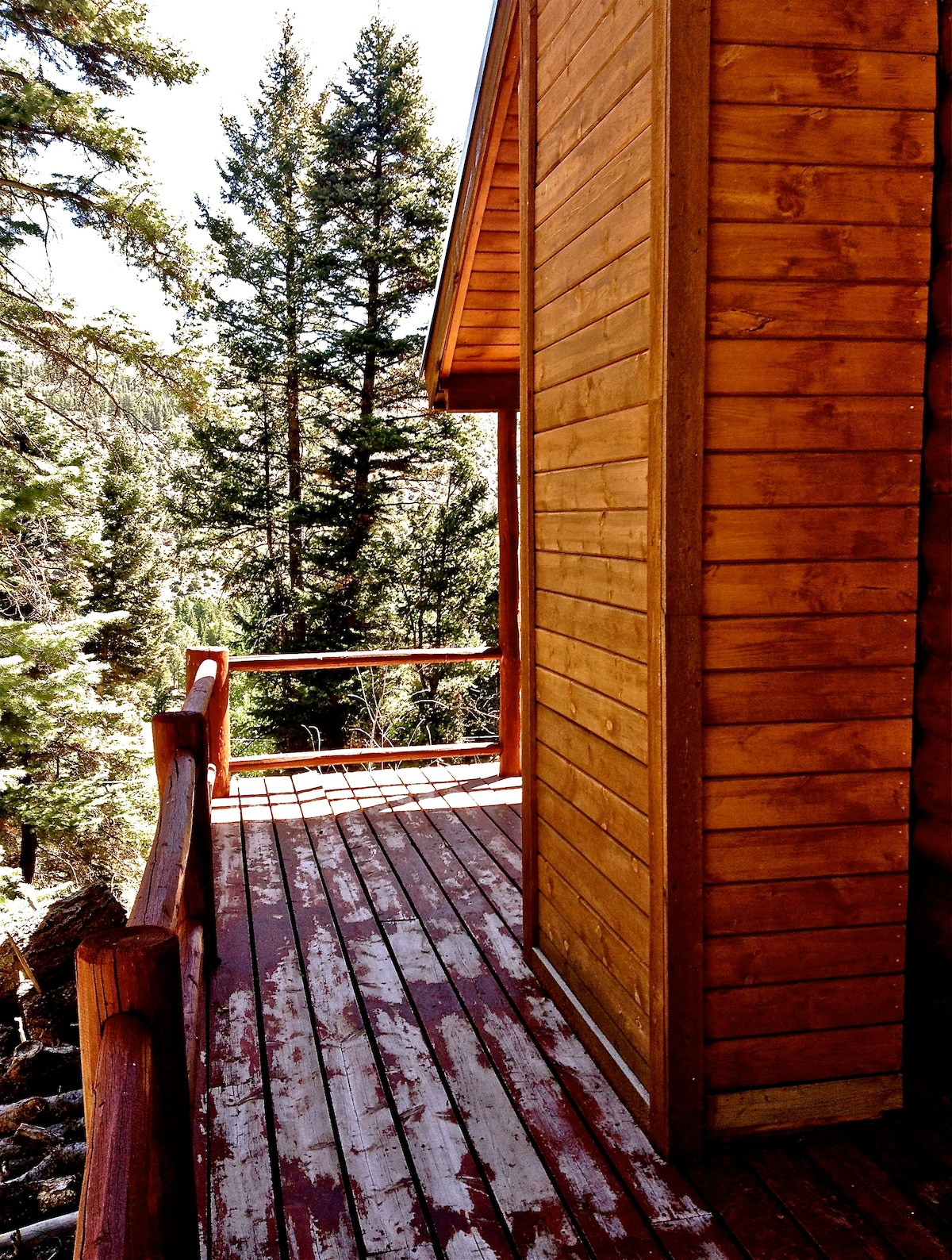 Wrap around porch with views of the pines, aspen and canyon beyond.