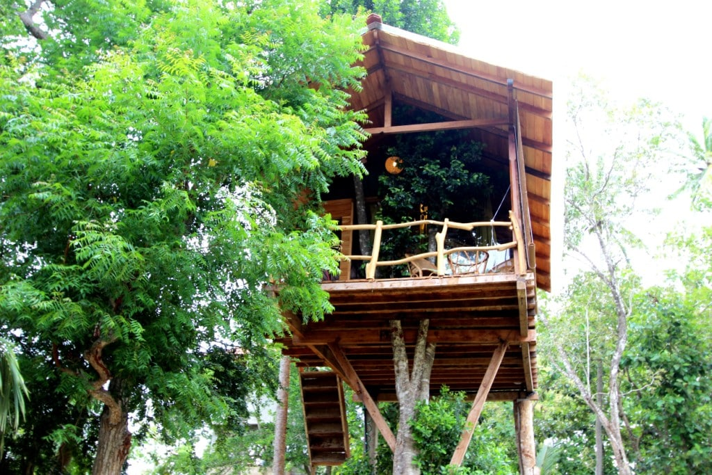 Romantic Luxury  Tree House