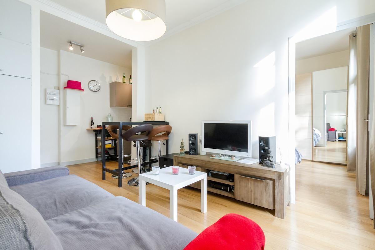 Cosy apartment Levallois-Paris XVII