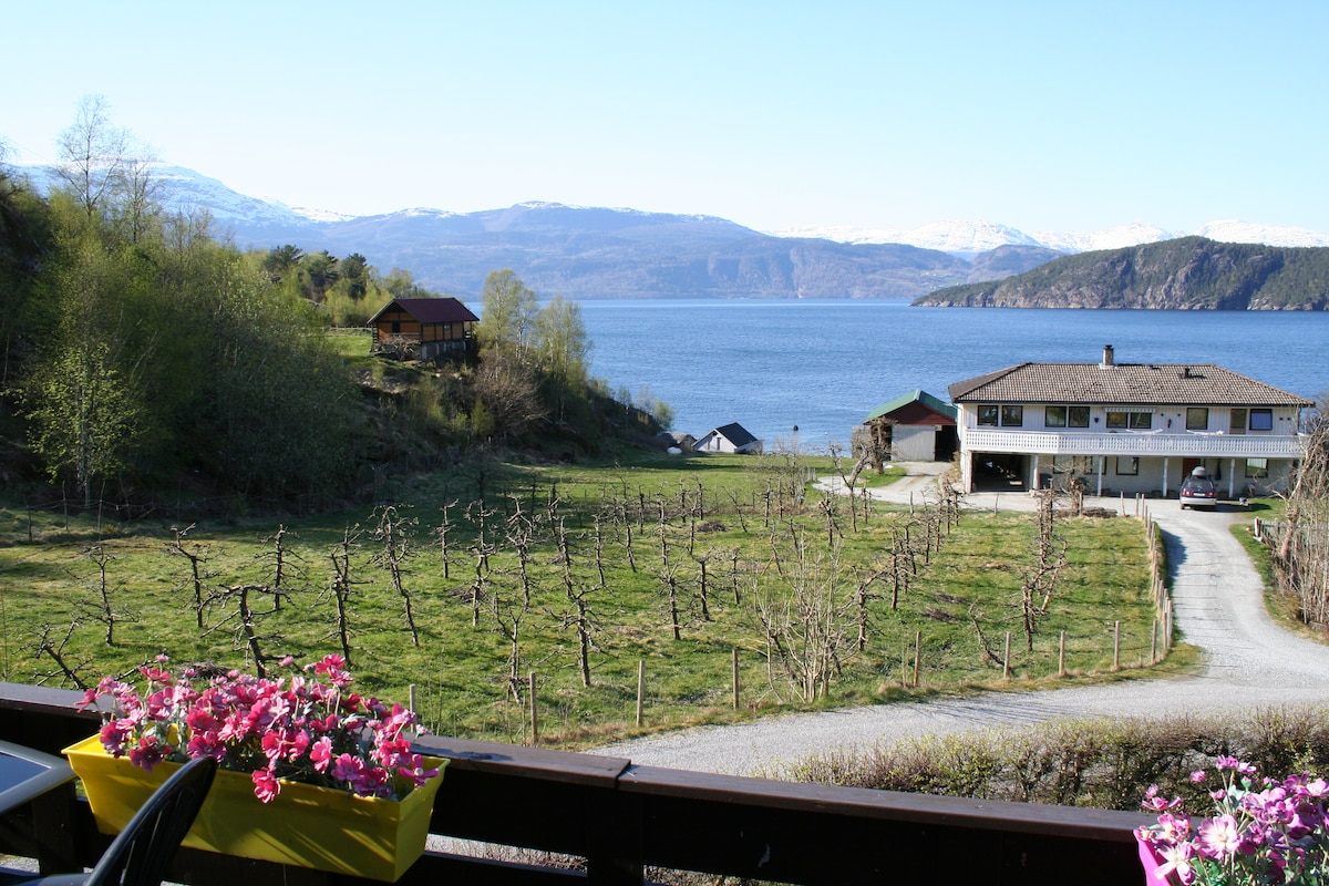 Room 2-beautiful view of the fjord!