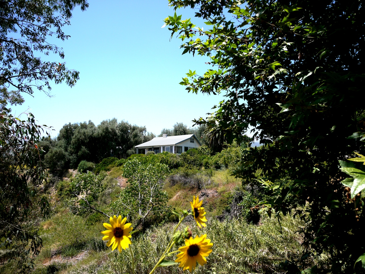Tucked away in your very own Olive grove are the finest views of the mountains and valley below