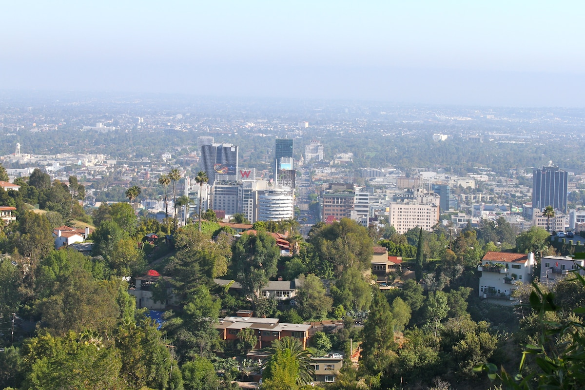 View of Hollywood from room and patio