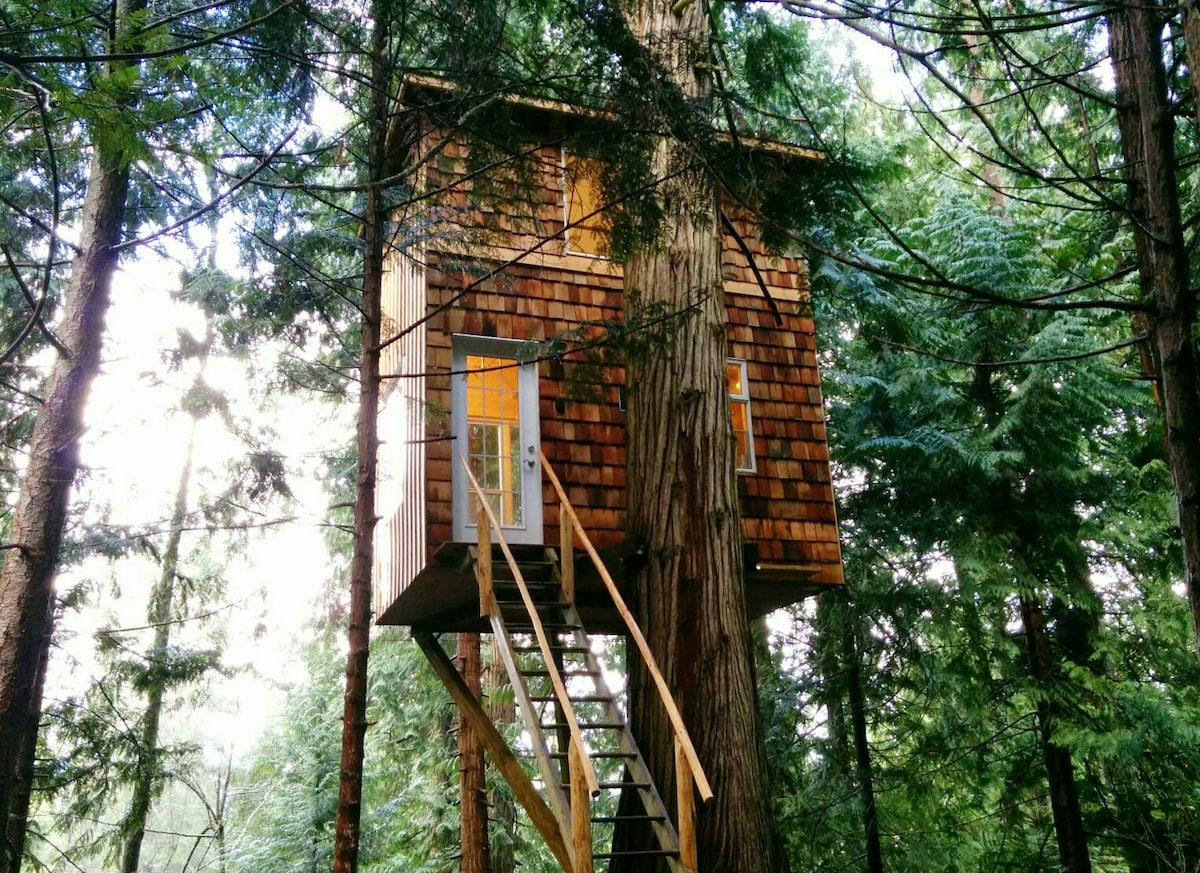 Raven Loft Treehouse