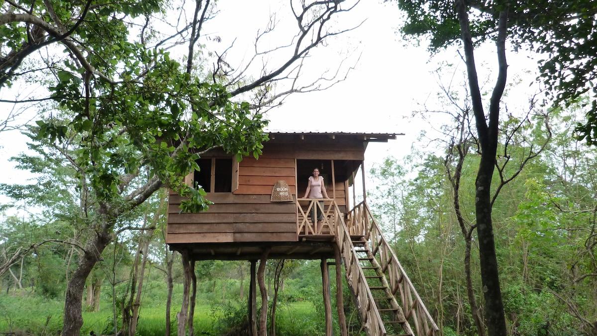 Treehouse Sigiri Queens Rest