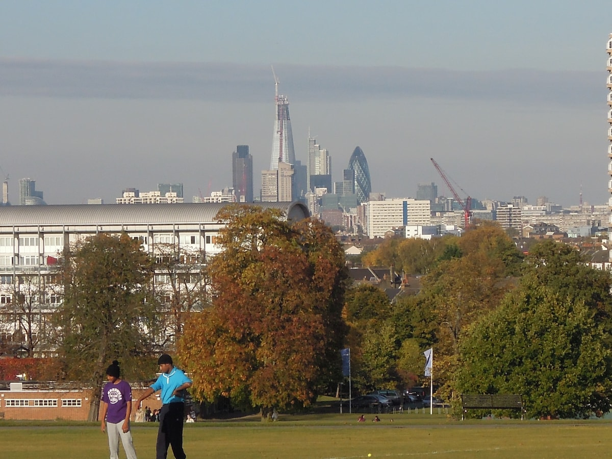 The view of the city taken from Brockwell Park