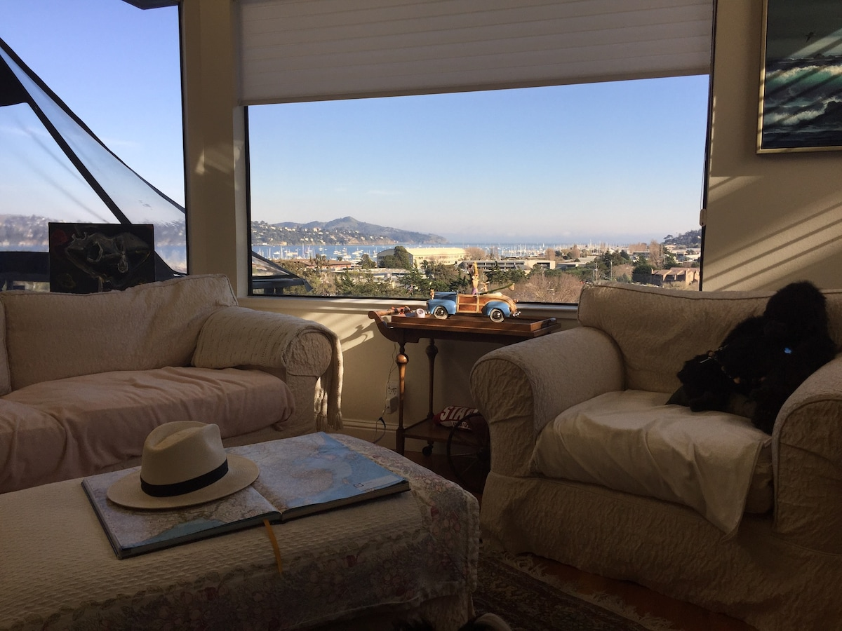 My living room with SF Bay View