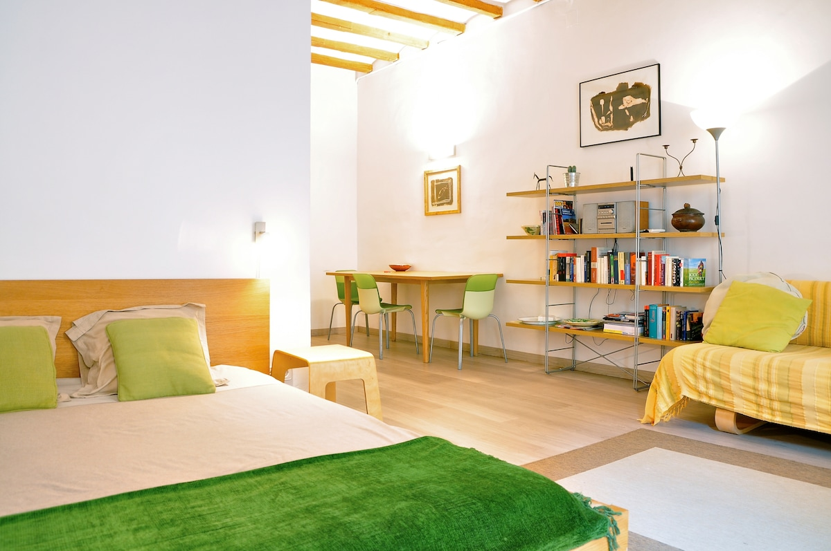 Comfortable studio in Barcelona