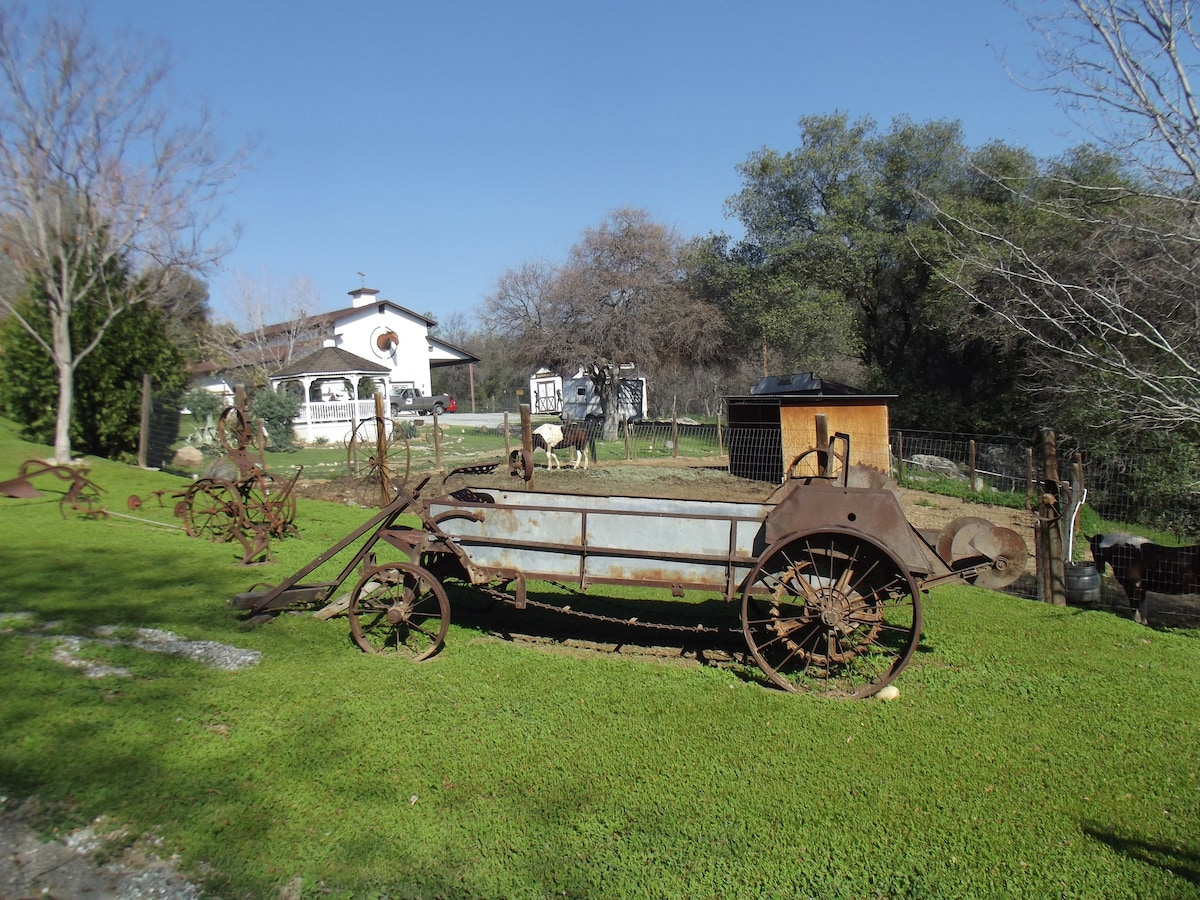 Stay with us on our private 5 acre ranch