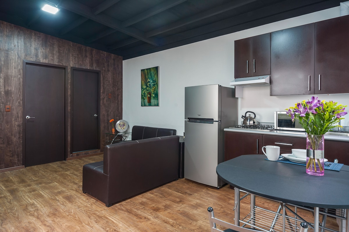 Brand-new apartment downtown Mexico