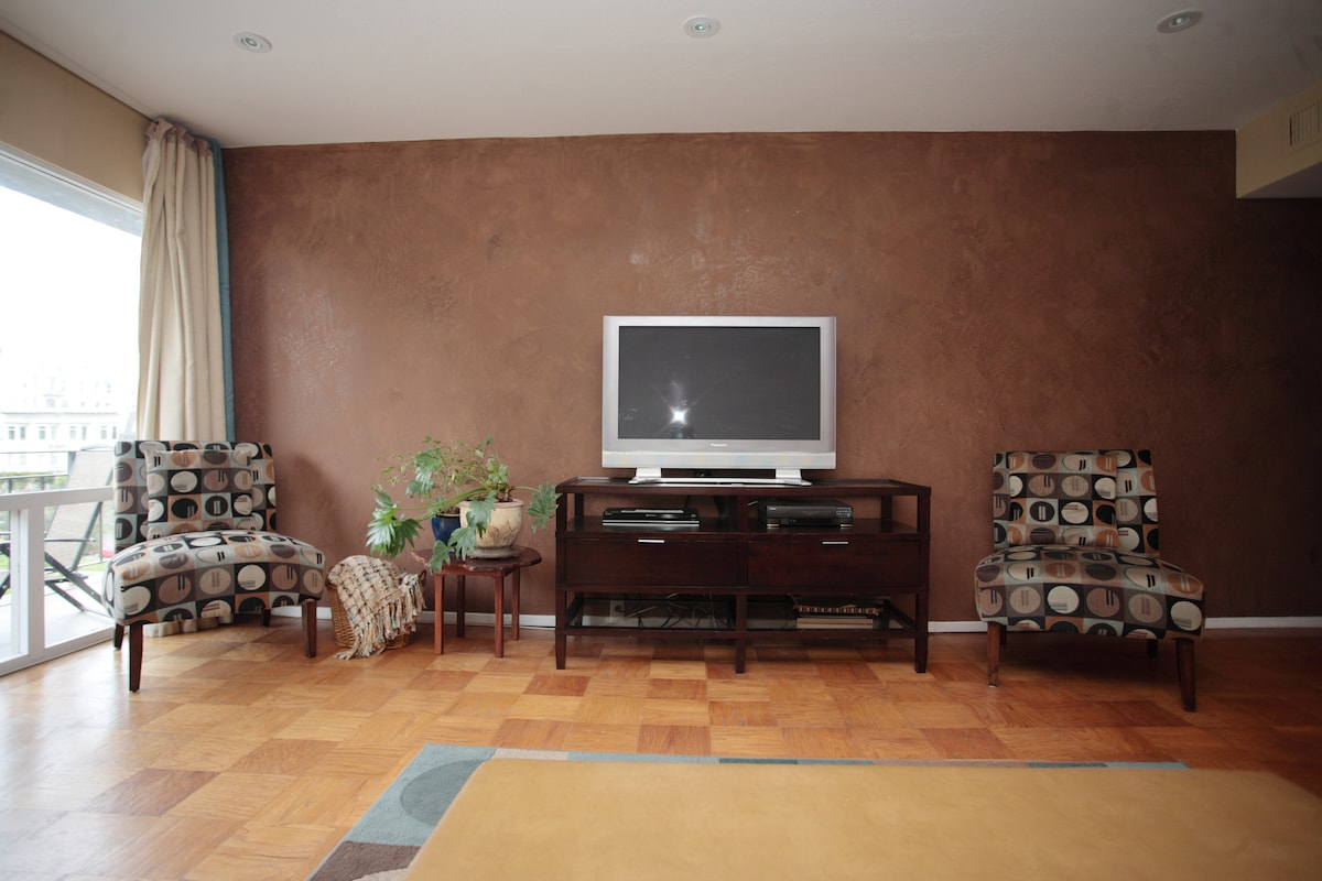 """Rich Venetian Plaster Wall with 42"""" Flat Panel"""