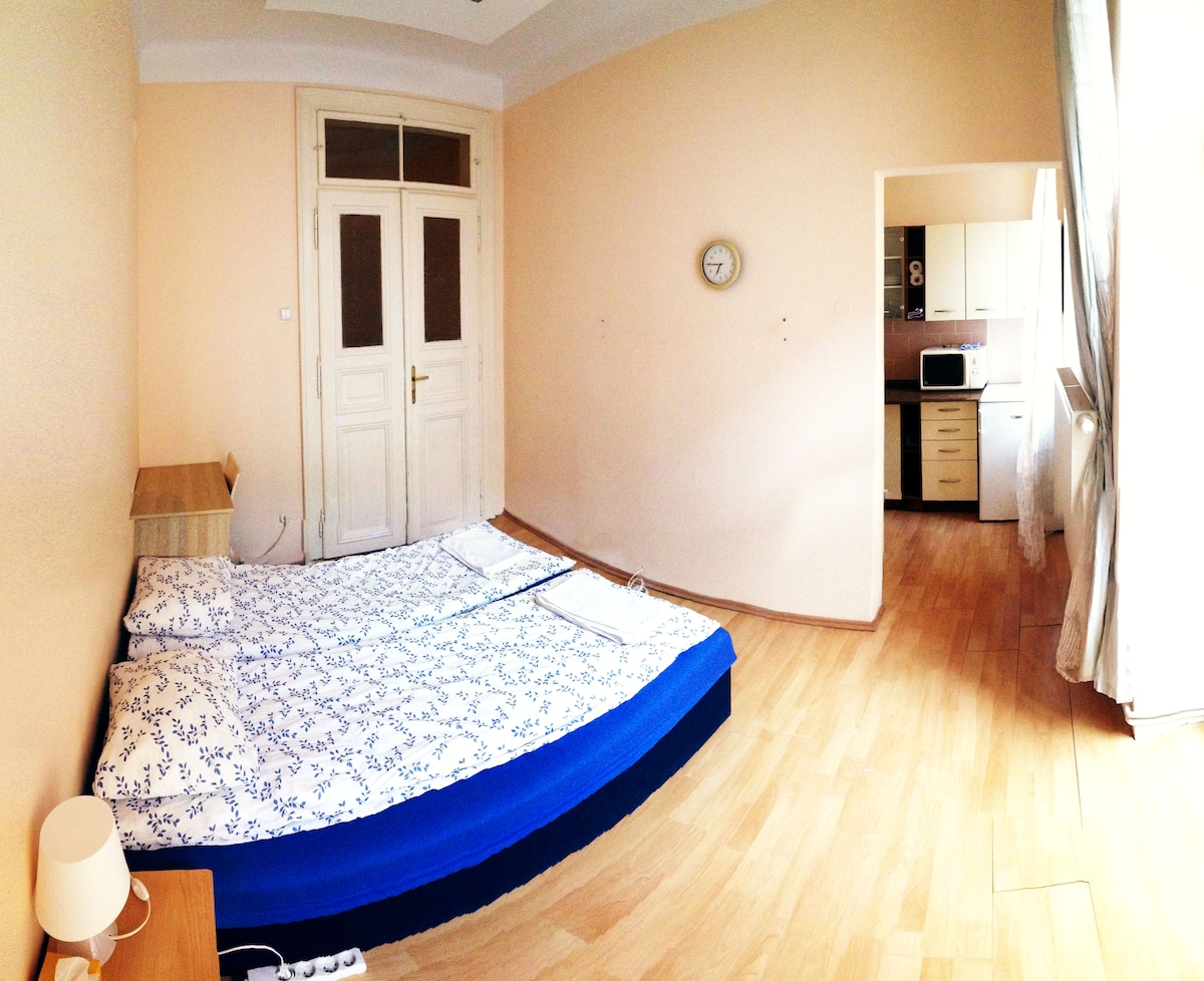 Comfortable room in the ♥ of Prague