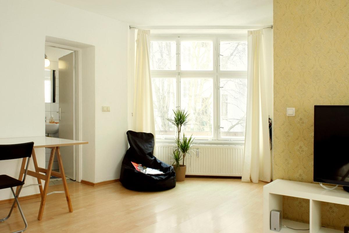 Cozy apartment 2-rooms BERLIN MITTE