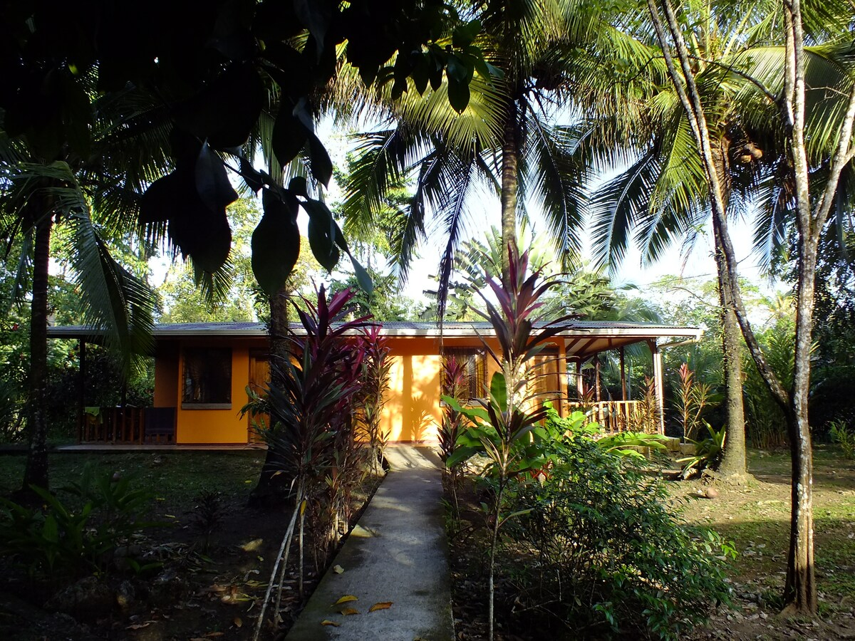 Caribe Luna Papaya apartment