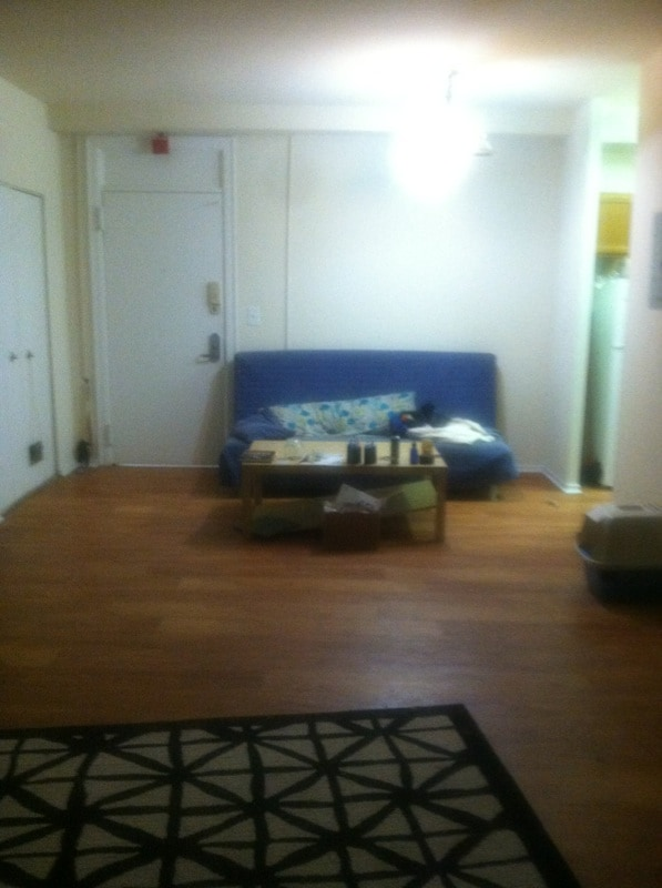 Large 1 bedroom apt in nice area