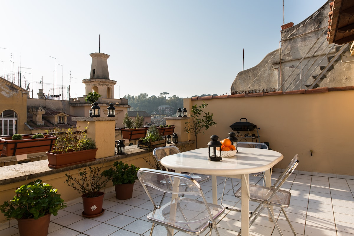 Vatican. Sunny terrace apartment.