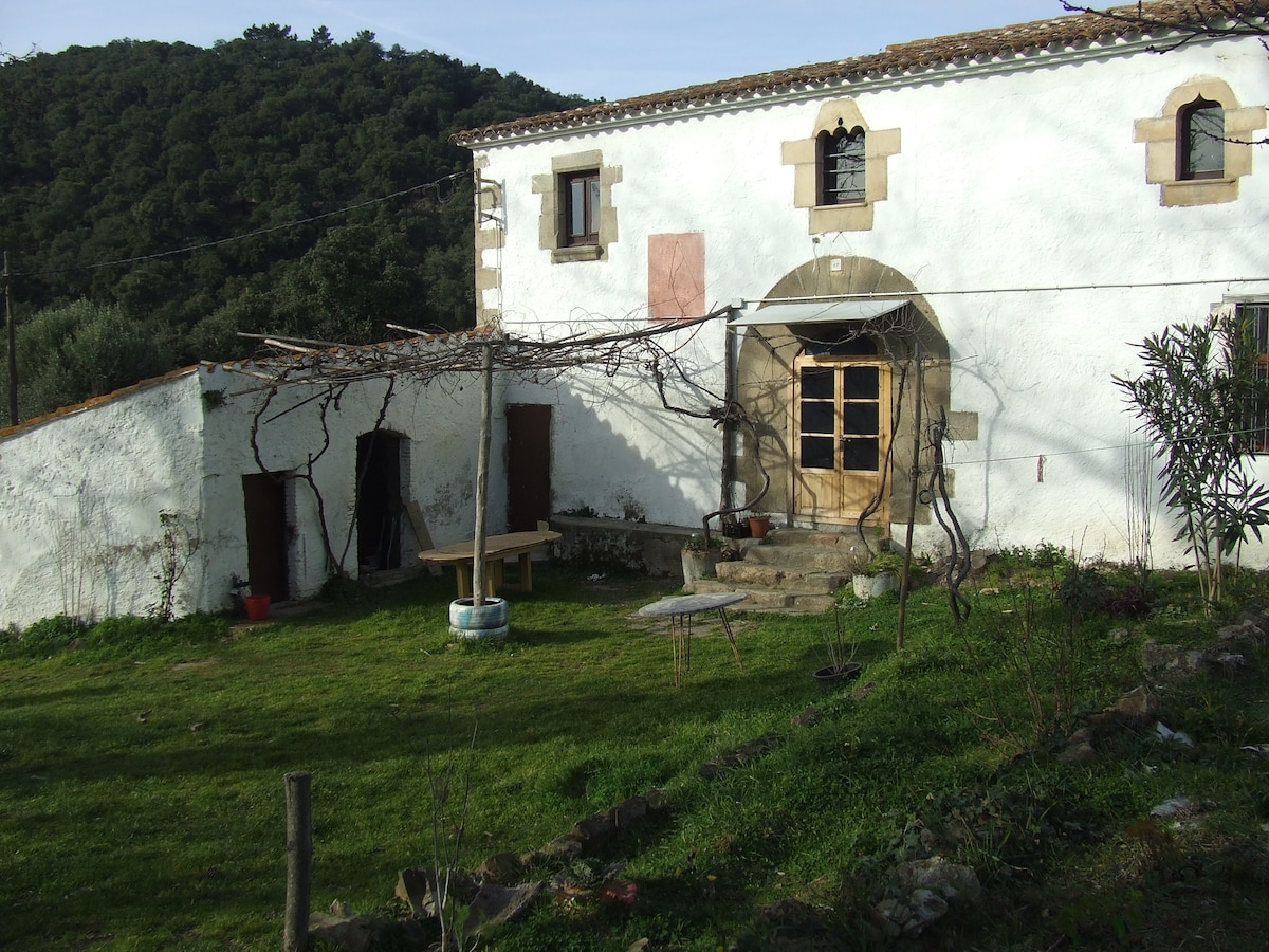 Countryside house of the s.XII