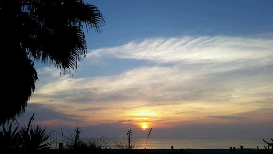 Beach rehab with a view!