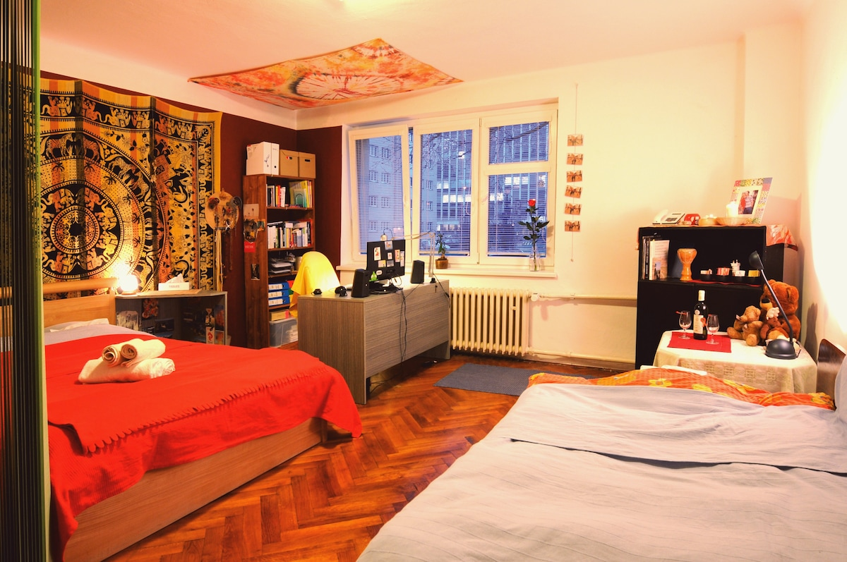 Lovely Room in the City Center